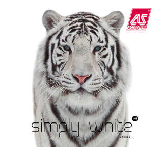 Tapetenkollektion «Simply White 3» von «A.S. Création»: Tapeten-Artikel 132; Raumbilder 3