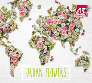 Collection de papiers peints «Urban Flowers» de «A.S. Création»: Articles 46; Visuels 18
