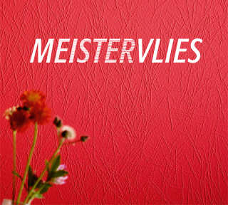 Wallpaper Collection «Meistervlies 6» by «A.S. Création»: Wallpaper Item 22; Interior Views 6