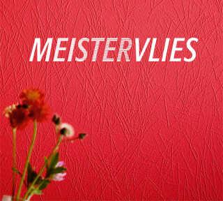 Tapetenkollektion «Meistervlies 6» von «A.S. Création»: Tapeten-Artikel 22; Raumbilder 3