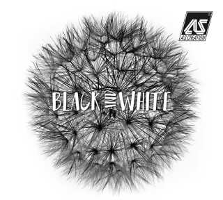 Wallpaper Collection «Black & White 3» by «A.S. Création»: Wallpaper Item 68; Interior Views 14