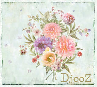 Wallpaper Collection «Djooz 2» by «Djooz»: Wallpaper Item 37; Interior Views 10