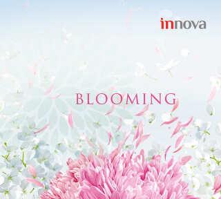Collection de papiers peints «Blooming» de «A.S. Création»: Articles 75; Visuels 21