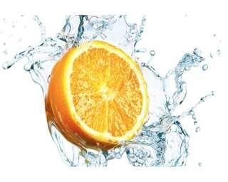 Livingwalls impression numérique «Orange in water» 036670