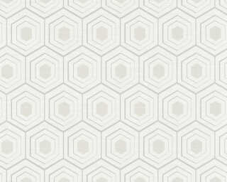 Private Walls Wallpaper «Graphics, 3D, Grey, Metallic, Silver, White» 358992