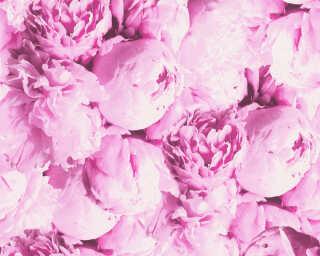 A.S. Création papier peint «Fleurs, rose» 373981