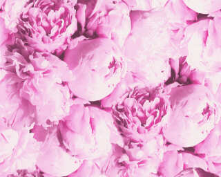 A.S. Création Tapete «Blumen, Rosa» 373981