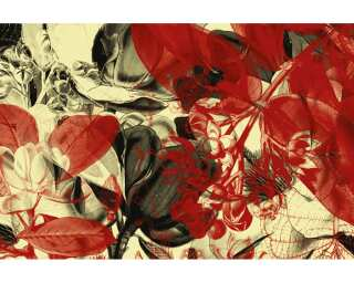 Architects Paper Photo wallpaper «Botanical Garden» 470001