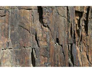 Architects Paper Photo wallpaper «Rock Face 1» 470130