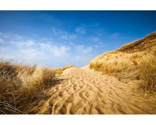 Photo wallpaper «Sylt Beach» 470304