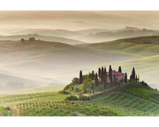 Fototapete «Toscana Morning» 470307