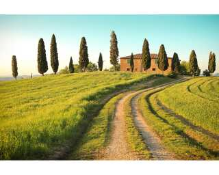 Photo wallpaper «Toscana Summer» 470311