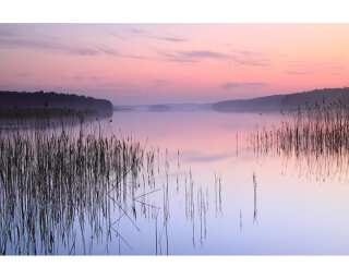 Fototapete «Lake-Calm» 470313