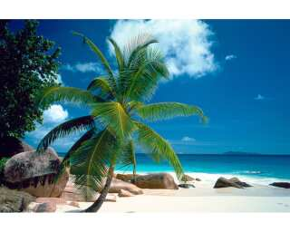 Livingwalls Photo wallpaper «Beach» 470333