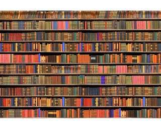 Livingwalls Fototapete «Bookcase» 470341