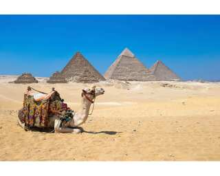 Livingwalls Fototapete «Giza in Cairo» 470601