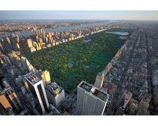 Livingwalls Fototapete «Central Park» 470602