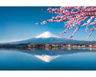 Livingwalls Fototapete «Fuji» 470603