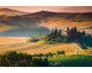 Livingwalls Fototapete «Toscana» 470605