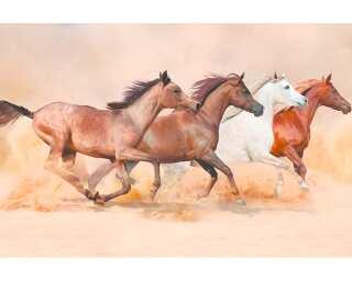Livingwalls Photo wallpaper «Herd Gallops» 470606