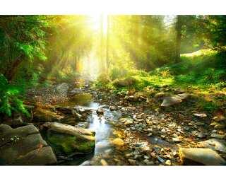 Livingwalls Fototapete «River» 470624