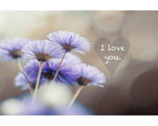 Livingwalls Photo wallpaper «I love you» 4706621