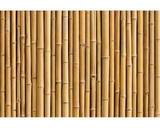 Livingwalls Photo wallpaper «Bambus» 470679