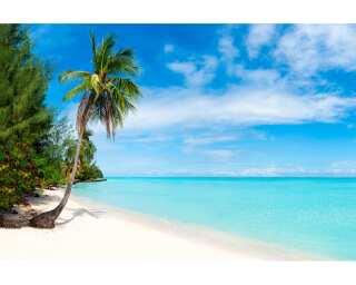 Livingwalls impression numérique «Tropical Sea 1» 470691