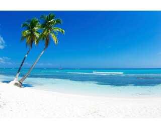 Livingwalls impression numérique «Tropical Sea 3» 470694