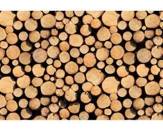 Fototapete «Stack of Wood» 470751