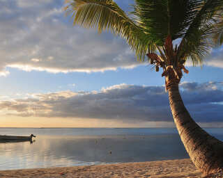 Livingwalls Фотообои «Mauritius» DD100325