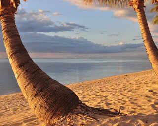 Livingwalls Fototapete «Mauritius» DD100331