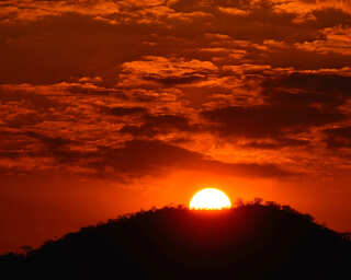 Livingwalls Фотообои «Tansania» DD100598