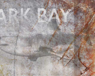 Architects Paper Photo wallpaper «Shark Bay» DD108945