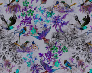 Photo wallpaper «funky birds 2» DD110181