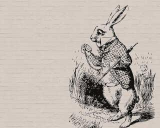 Fototapete «bunny 2» DD110446