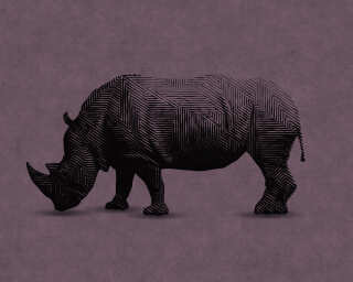 Fototapete «rhino 2» DD110506