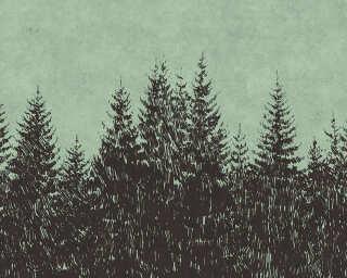 Fototapete «black forest 2» DD110516