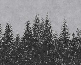 Fototapete «black forest 3» DD110521