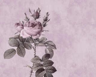 Fototapete «rose 1» DD110741