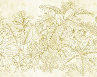 Fototapete «fern garden 1» DD111091