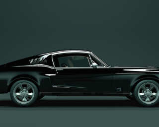 Kathrin und Mark Patel Photo wallpaper «mustang 1» DD113232