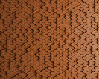 Kathrin und Mark Patel Photo wallpaper «honeycomb 2» DD113327
