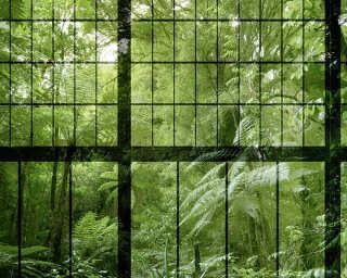 Fototapete «rainforest 2» DD113742