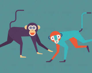 Kathrin und Mark Patel Fototapete «monkeyBusines1» DD113812