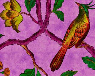 Fototapete «birdOfParadis2» DD113842