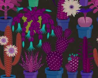 Kathrin und Mark Patel Fototapete «cactus garden1» DD114142