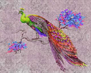 Kathrin und Mark Patel Photo wallpaper «peacock 2» DD114312