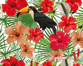 A.S. Création Photo wallpaper «Toucan 1» DD116609