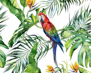 A.S. Création impression numérique «Parrot 1» DD116614